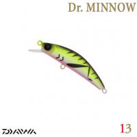 DR. MINNOW 5FS 13