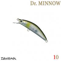 DR. MINNOW 5FS 10