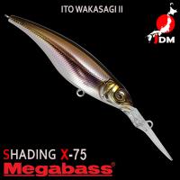 MEGABASS SHADING-X75 10