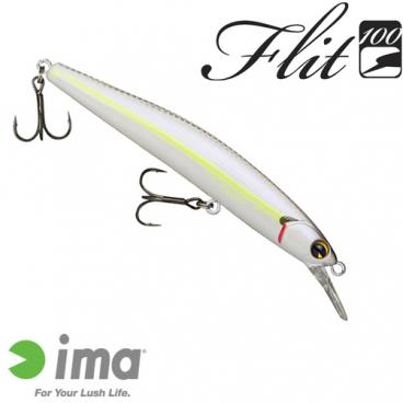FLIT 100