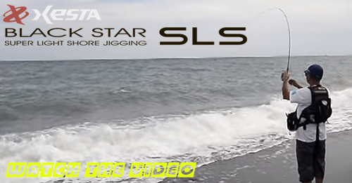 VIDEO-4-PRESENTATION-XESTA-SLS.jpg