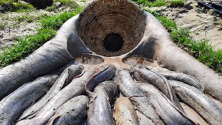 Easy Hole Trap Fishing  | Amazing Fish Trap