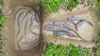 Amazing Catch Hole Fish Trap- Smart Boy Build Fish Trap By Muddy Soil