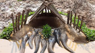 Amazing Fish Trap in Muddy Soil  | Unique Fish Trapping System