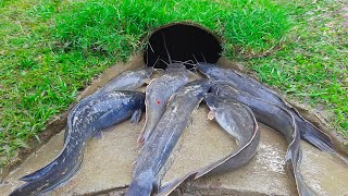 Amazing Bamboo Hole Fish Trap - Boy Build Fish Trap By Muddy Soil