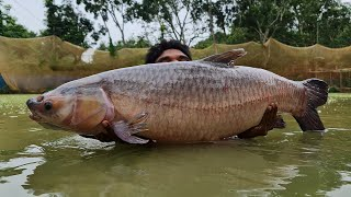 Amazing Cast Net Fishing | Best Fishing  Video