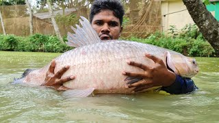 Most Satisfying Lot of Big fish Catch With Cast Net | Net Fish Catching