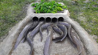 Make Simple Trap By Hand With PVC Pipe - Made Fish Trap by PVC Pipe