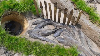 Amazing Hole Fish Trap- Smart Boy Build Fish Trap By Muddy soil With Bamboo Stick