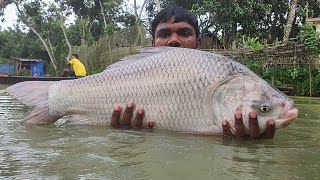 Big Fish Video | Fish Catching by Cast Net | Net Fishing