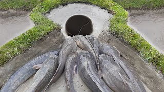 Amazing Fish Traps For Big Fish | Unique Fish Trapping System