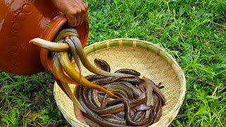 Build Fish Trap And Catch Eelfish In Secret Clay Pot in Under Water | Eels Trap Make