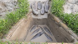 WOW Amazing Muddy Soil Hole Catfish Trap |  Unique  Fish Trap in Muddy Soil