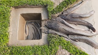 The Trap Can Catch Alot Of Fish With Deep Hole. ! Fish Trap