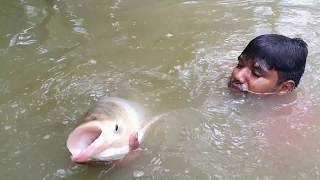 Amazing Fishing | Underwater Carp Fishing (Part-3)