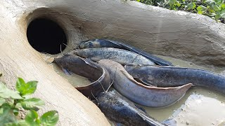 Amazing Hole Fish Trap- Smart Boy Build Fish Trap By Muddy soil