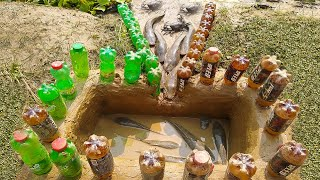 Boy Made Fish Trap by 50 Plastic Bottle ..