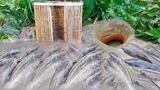 Trap Fishing-Catfish Trap By Deep Hole Fishing Method With Bamboo Box Work 100%