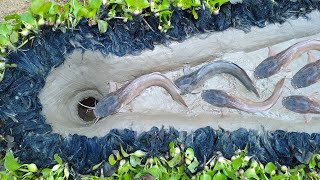 Trap Fishing | Easy CatFish Trap- Amazing Boy Build Fish Trap By Muddy soil Useing Clay Pot