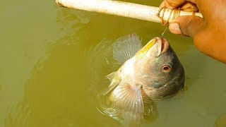 Amazing Boy Catching Fish With Hook | Best Hand Fishing By Useing Sticks