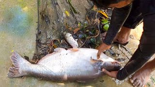 Net Fishing | Big Fish Catching With Cast Net | Net Fishing in the Village Pond (Part-1)