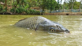 Amazing Underwater Fishing | Underwater Carp Fish Fishing Techniques (Part-4)