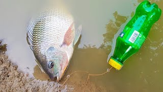 Unique Fish Trap With Plastic Bottle | New Bottle Fish Tap Method