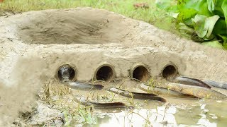 Amazing Hole Fish Trap- Smart Boy Build Fish Trap Old Method By Muddy soil- Get A Lot of Fish 100%