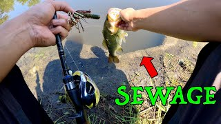 CATCHING FISH FROM A SEWER!!! (ABSURD 100 Degree Fishing CHALLENGE)