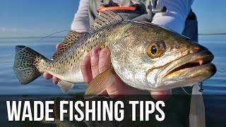 How to Catch More Fish while Wade Fishing