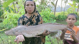 Cast Net Fishing - Net Fishing in Village For Big Fish - Catching Big Catfish