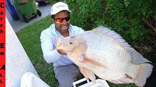 CATCHING GIANT Rare WHITE LIGHTNING FISH!