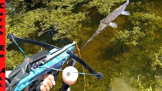 CROSSBOW FISHING for INVASIVE IGUANA and FISH!