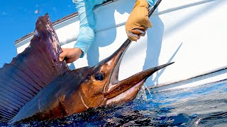 Fishing for MONSTER Sailfish in Guatemala