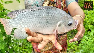 Best Net Fishing Video in 4K - Traditional Cast Net Fishing in Village - Fishing By Net