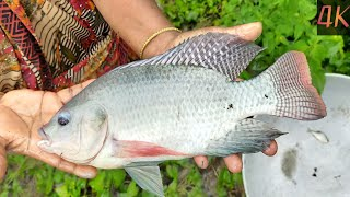 Best Net Fishing Video - Traditional Cast Net Fishing in Village - Fishing With Beautiful Nature