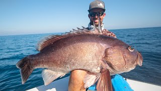 Monster Guatemala Grouper Fishing | Catch N Cook