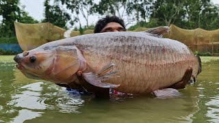 Big Monsters Fish Catch By Cast Net | Net Fishing Video | Big Carp Fish Fishing