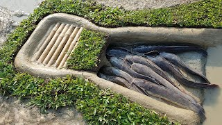Amazing Easy Fish Trap | Unique Easy Fish Trap System | Trap Fishing