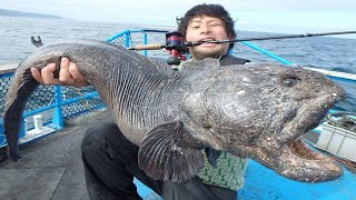 Amazing Fastest Giant Monster Fish Fishing Skill - Biggest Swordfish and Grouper Catch I Never Seen