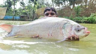 NET FISHING | Catch a Lot of Fish With Net Fishing | Net Fishing in Pond